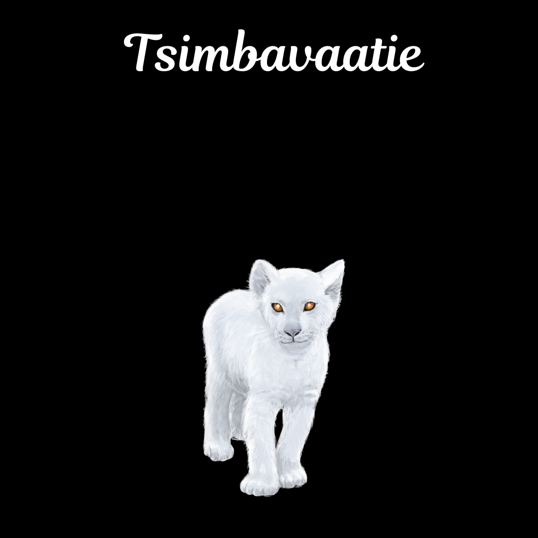 Tsimbavaatie Ubuntopia